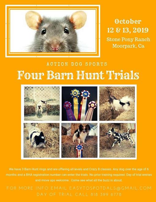 ADS BH Trial flyer Oct.jpg