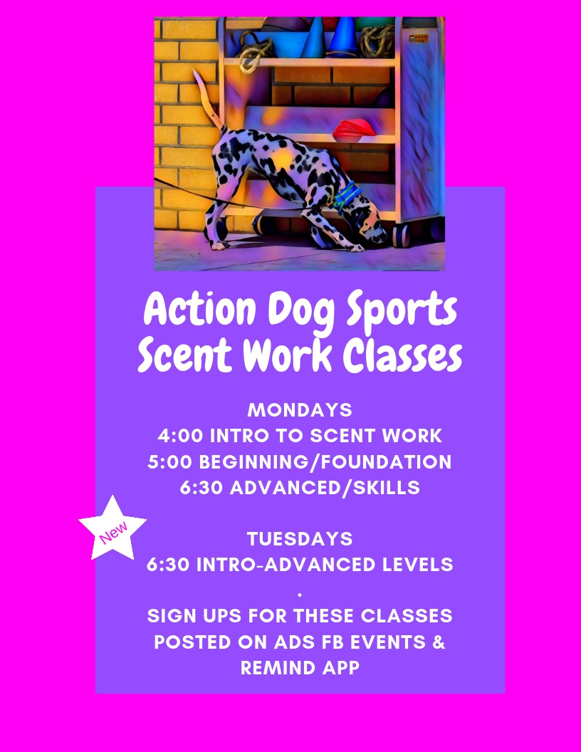 ADS New SW Classes