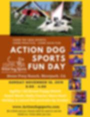 Nov Action Dog Sports Fun Day.jpg