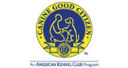 AKC CGC Classes & Tests