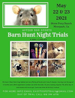 Copy of ADS BH Trial flyer0.jpg