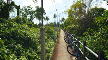 """LET'S GO BIKING THAILAND. """"KNOWING US KNOWING BANG KACHAO"""""""