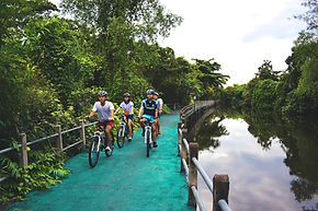 Let's go Biking, Thailand Bicycle Tour