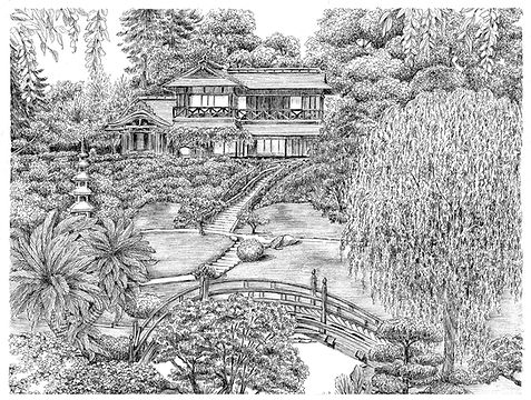 Pen & Ink Garden by Lynn Van Dam Cooper
