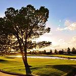 Desert Pine Golf Course.jpg