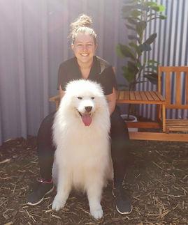 Dog Grooming, Dog Daycare, Pet Shop, Dog Toys, Pet Supplies, Whangarei, New Zealand