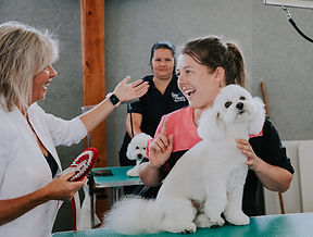 Dog Grooming, Doggy Daycare, Doggie Daycare,Dog Daycare, Pet Shop, Dog Toys, Pet Supplies, Whangarei, New Zealand, Melanie Newman, Smith & Burton, Smith and Burton, Nagayu Co2 Skin Therapy, Purify Charcoal Body Scrub, Deep Condition Keratin Treatment, Dead Sea Mineral Bath