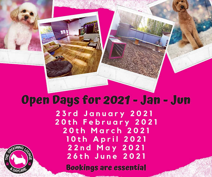 Copy of OPEN DAYS FOR 2020.png