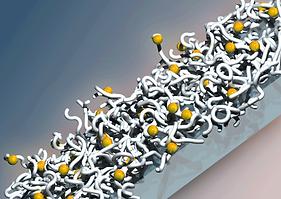 virus composite material, bio-sensing, protein-based sensor