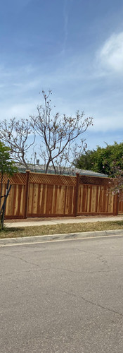 Exterior Front-yard Fence