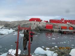 cruce cable base Frei