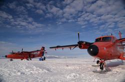 Aviones Twin Otter - Fuerza Aérea de Chile