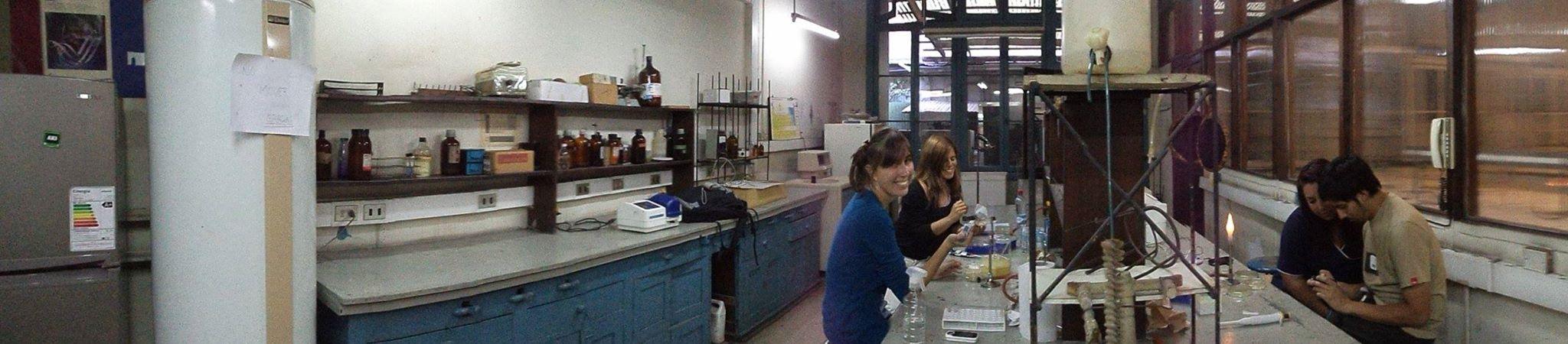 procesando muestras de ventana Lab Uchile
