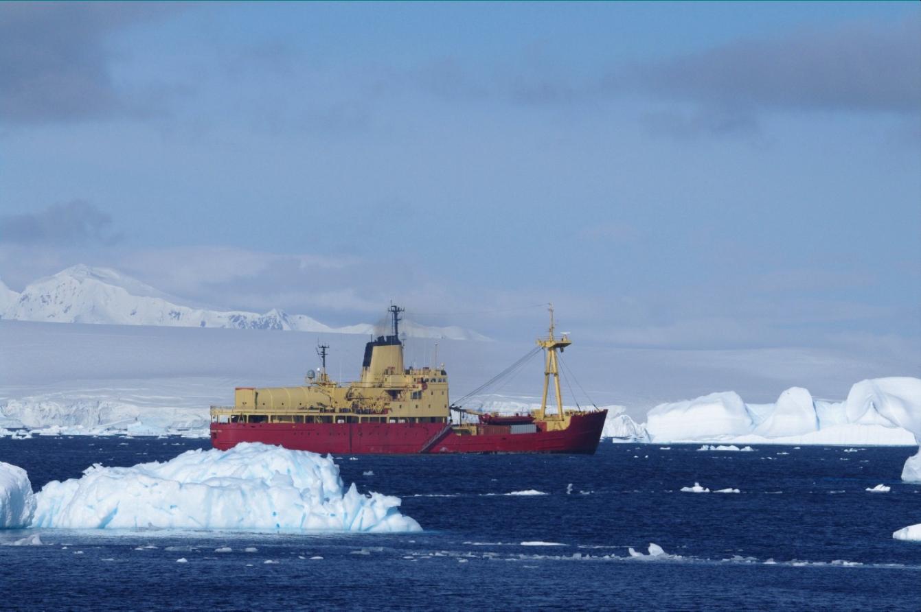 Viel Antartica