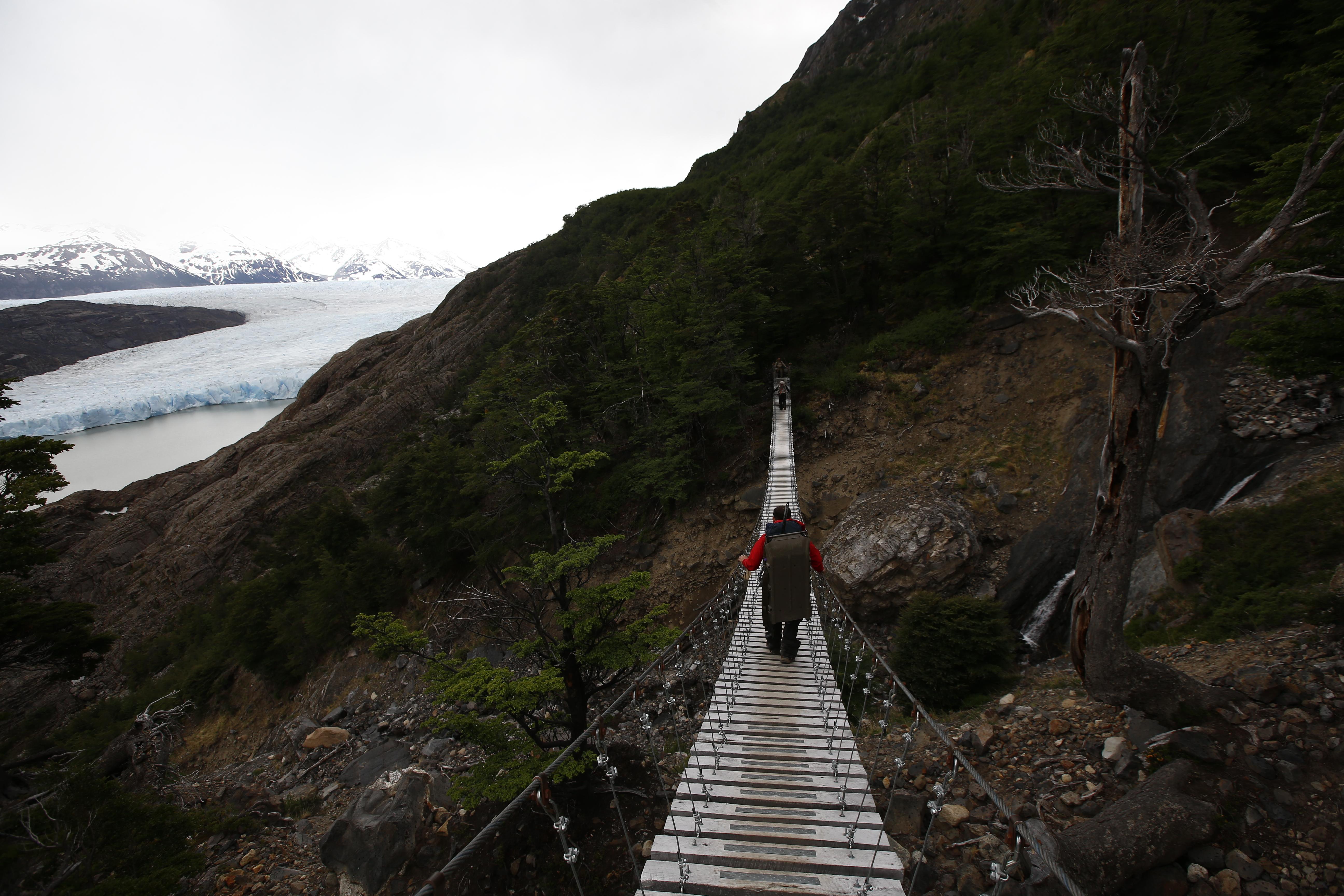 Camino al Glaciar Grey