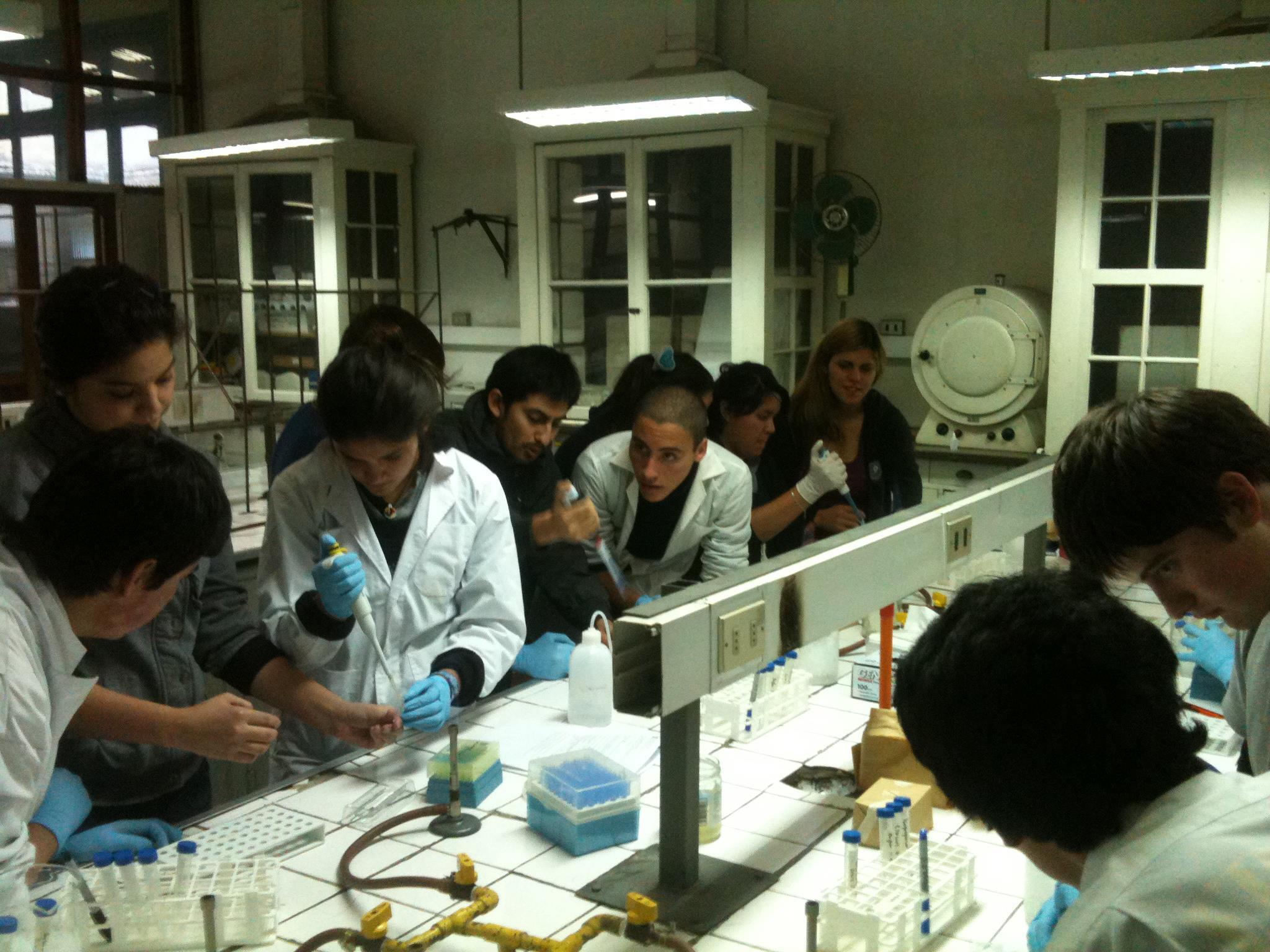 lumnos colegio trabajando en Nanolab Julio 2012