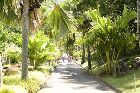 Botanischer Garten Victoria