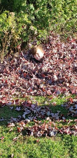 Kane in leaves