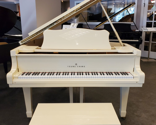 Young Chang Baby Grand