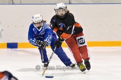 SM karsintasarja 18.04.2009 Walapais vs. Lahti_18.jpg