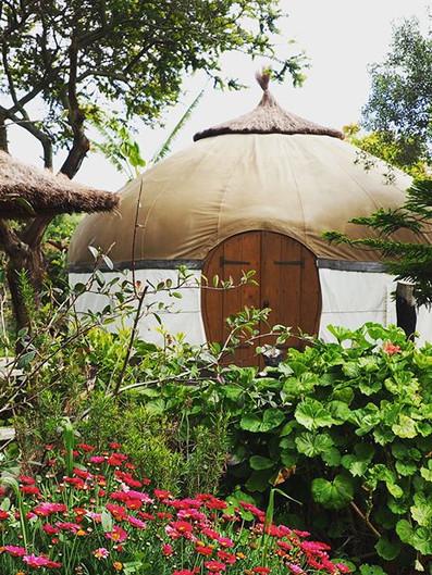 Yurts in spring