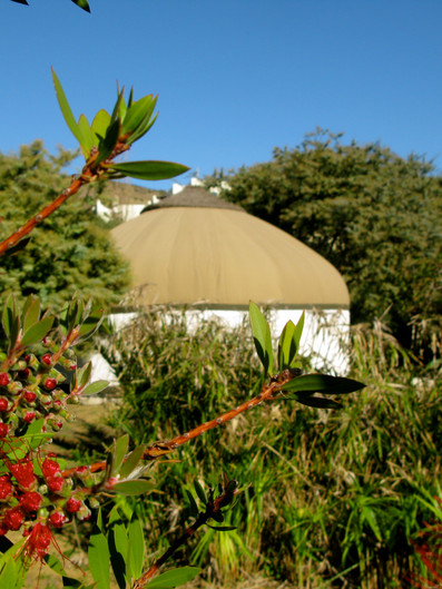 Summer Yurt