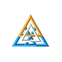 VFSM Triangle Only Logo.png