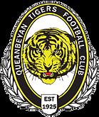 Queanbeyan_fc_logo.png