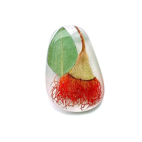 Orange Flowering Gum Brooch