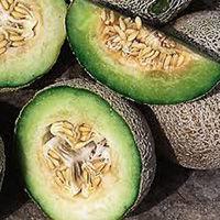 green nutmeg.jpg