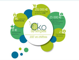 Infographie Eko Synergies