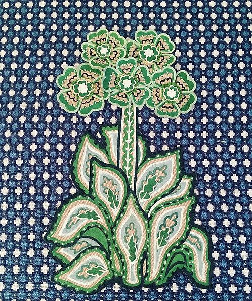 Green Primrose