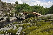 Puente Palo