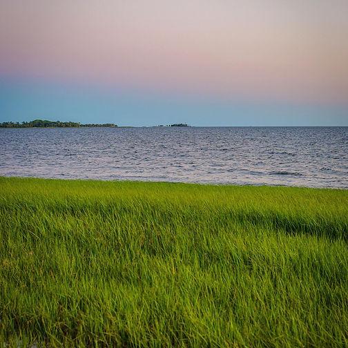 Grassy florida beach