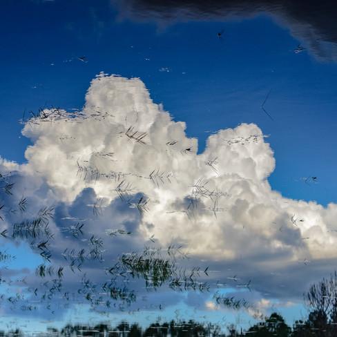 Old Florida Cumulonimbus reflection.jpg