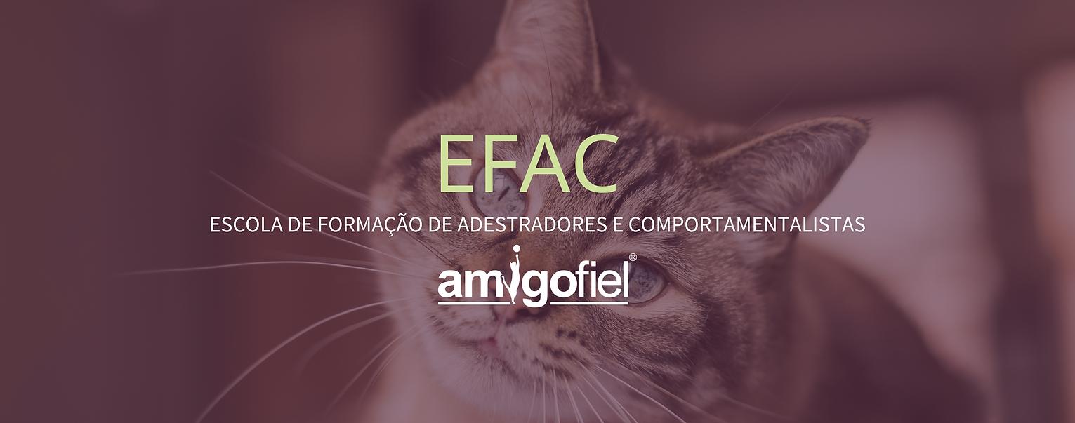 EFAC GATOS SITE.png