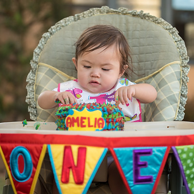 Amelia's 1st Birthday
