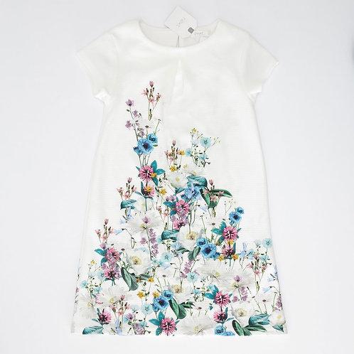 6Y   NEXT    שמלה חגיגית לאביב