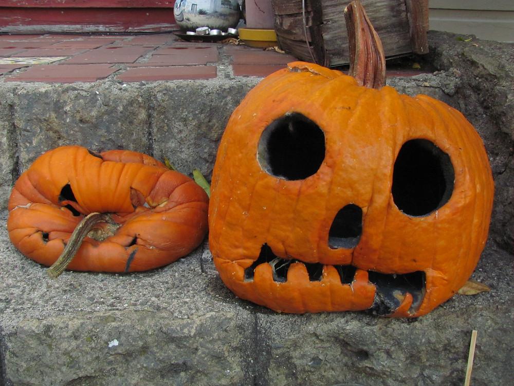 squishy pumpkins 2014