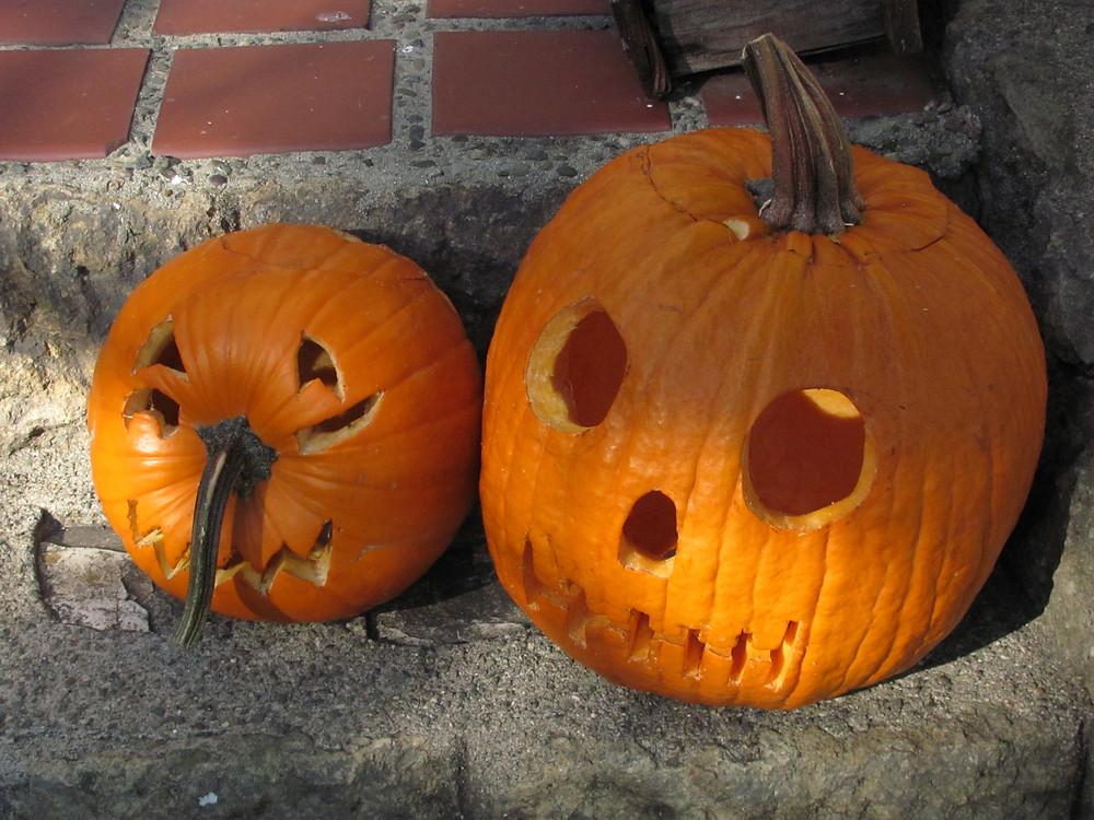 our pumpkins 2014