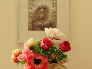 Anemones from the Farmers Market