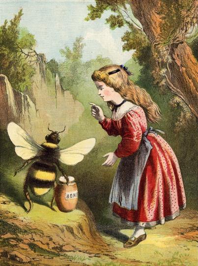 honey please.jpg