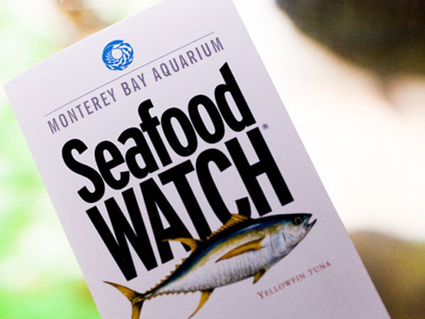 seafoodwatch-consumer-guide.jpg