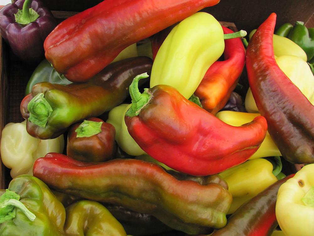 peppers_01.jpg
