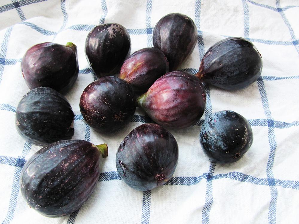 figs on towel.jpg