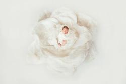 Newborn Photographer_Brisbane_4