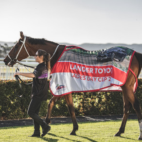 "POSITIVES FOR ""ELVIS"" TO LAND LADIES DAY CUP"