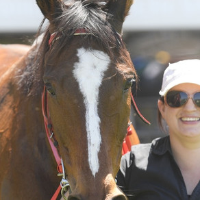 TRAINERS SHARE CUP DAY SPOILS AT CANBERRA