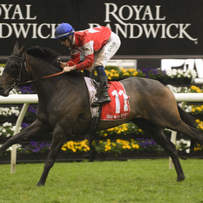 HAWKESBURY GETS FIRST RUNNER IN A $7.5M RACE