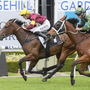 A GREAT DAY FOR WIDDUP STABLE AT ROSEHILL